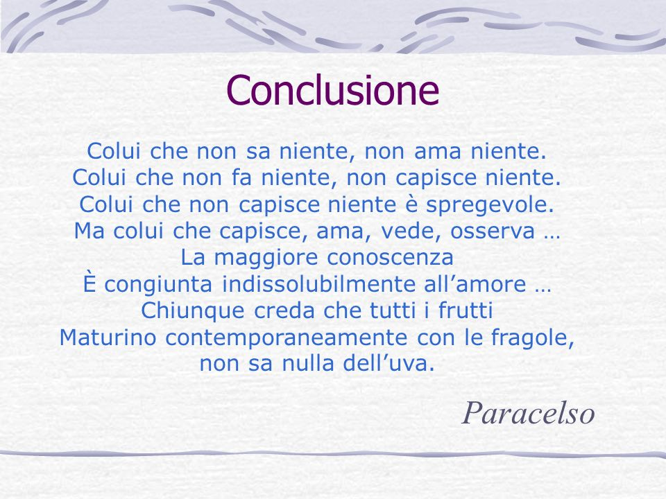 Conclusione Paracelso