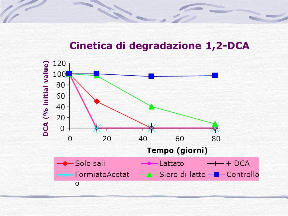 Cinetica di degradazione 1,2-DCA