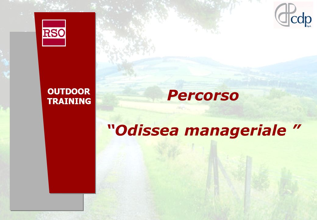 Odissea manageriale