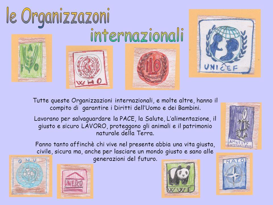 le Organizzazoni internazionali
