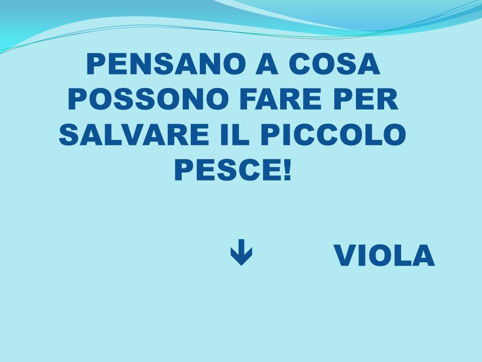 PENSANO A COSA POSSONO FARE PER SALVARE IL PICCOLO PESCE!