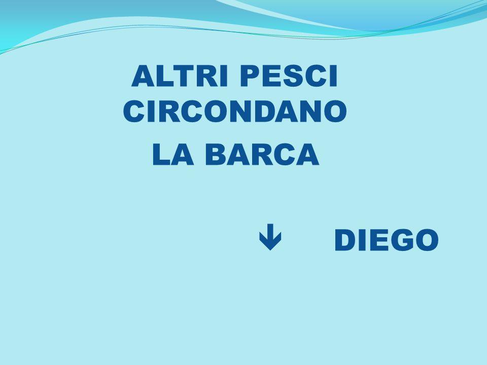 ALTRI PESCI CIRCONDANO