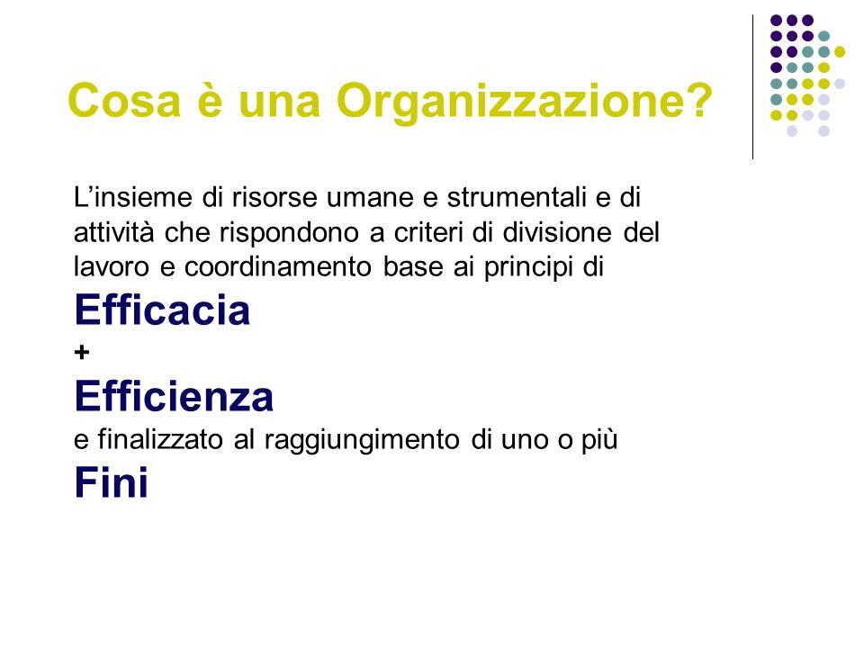 Cosa è una Organizzazione