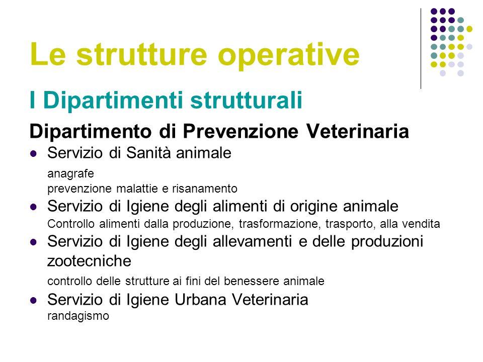 Le strutture operative