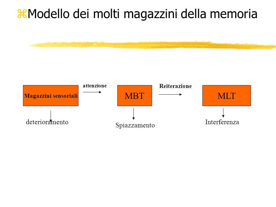 Modello dei molti magazzini della memoria