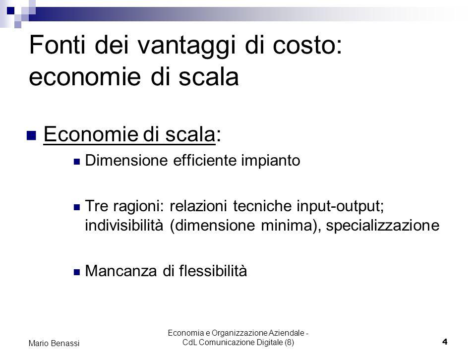 Fonti dei vantaggi di costo: economie di scala