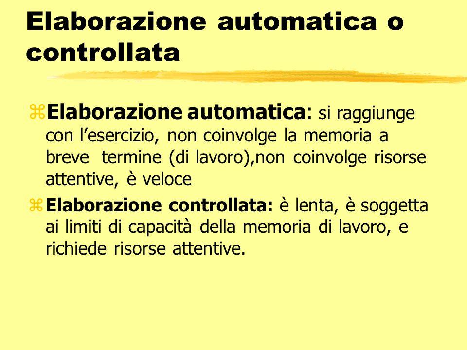 Elaborazione automatica o controllata