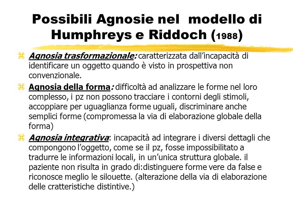 Possibili Agnosie nel modello di Humphreys e Riddoch (1988)