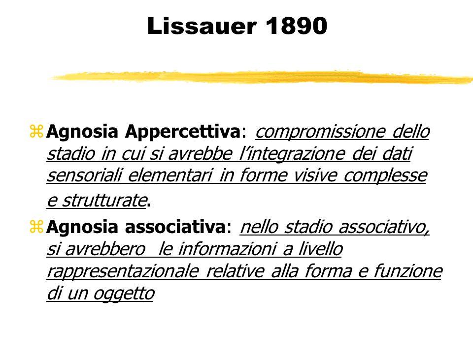 Lissauer 1890