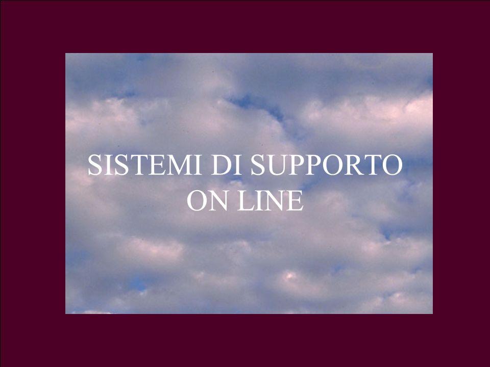 SISTEMI DI SUPPORTO ON LINE