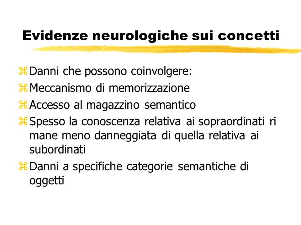 Evidenze neurologiche sui concetti