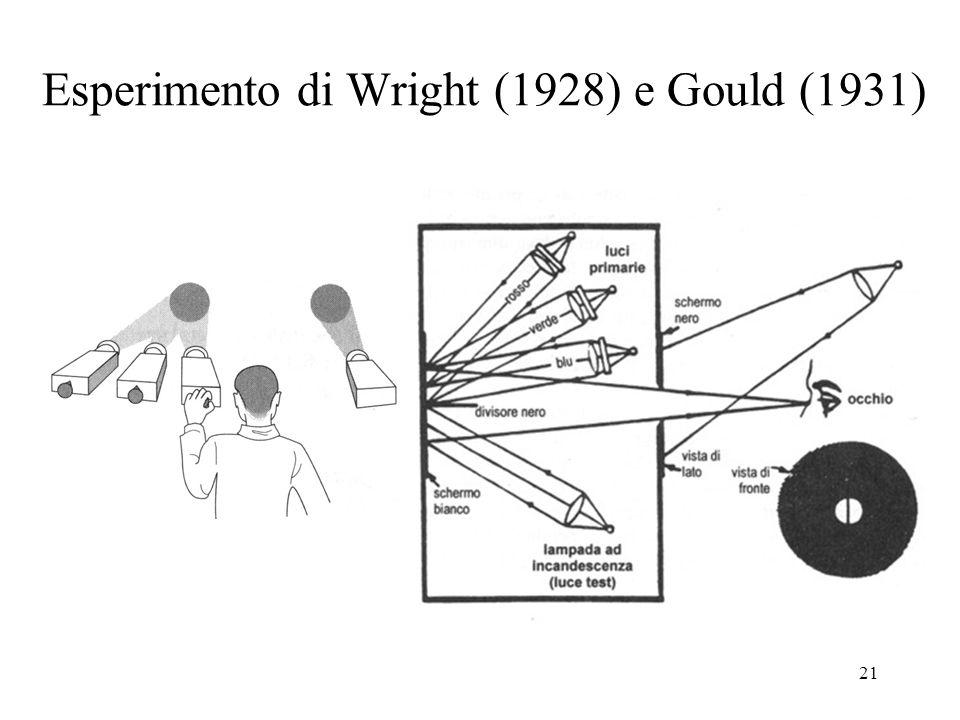 Esperimento di Wright (1928) e Gould (1931)