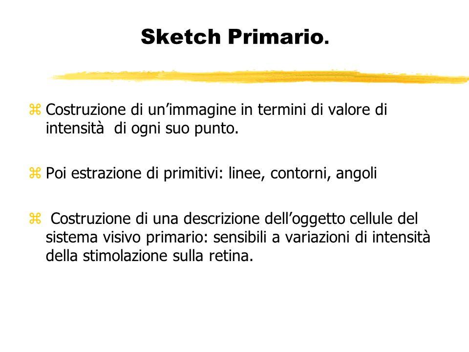 Sketch Primario. Costruzione di un'immagine in termini di valore di intensità di ogni suo punto.