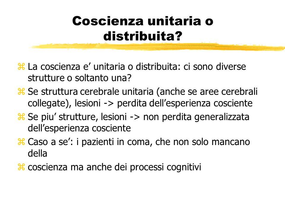 Coscienza unitaria o distribuita
