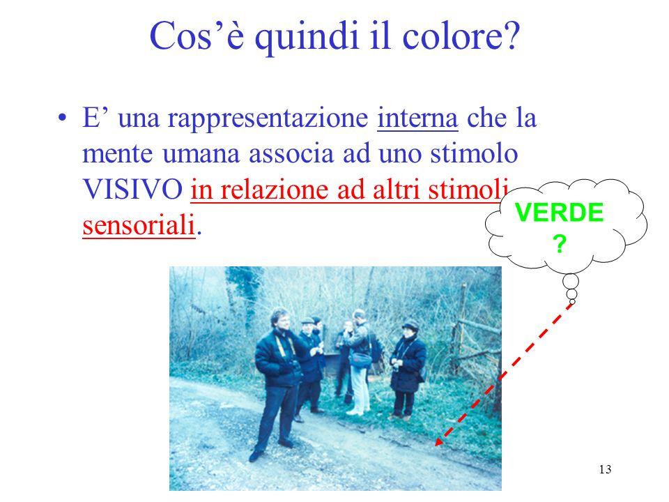 Cos'è quindi il colore E' una rappresentazione interna che la mente umana associa ad uno stimolo VISIVO in relazione ad altri stimoli sensoriali.