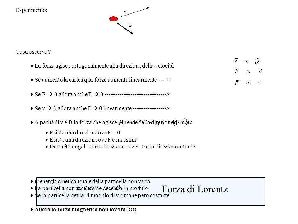 Forza di Lorentz F Esperimento: Cosa osservo