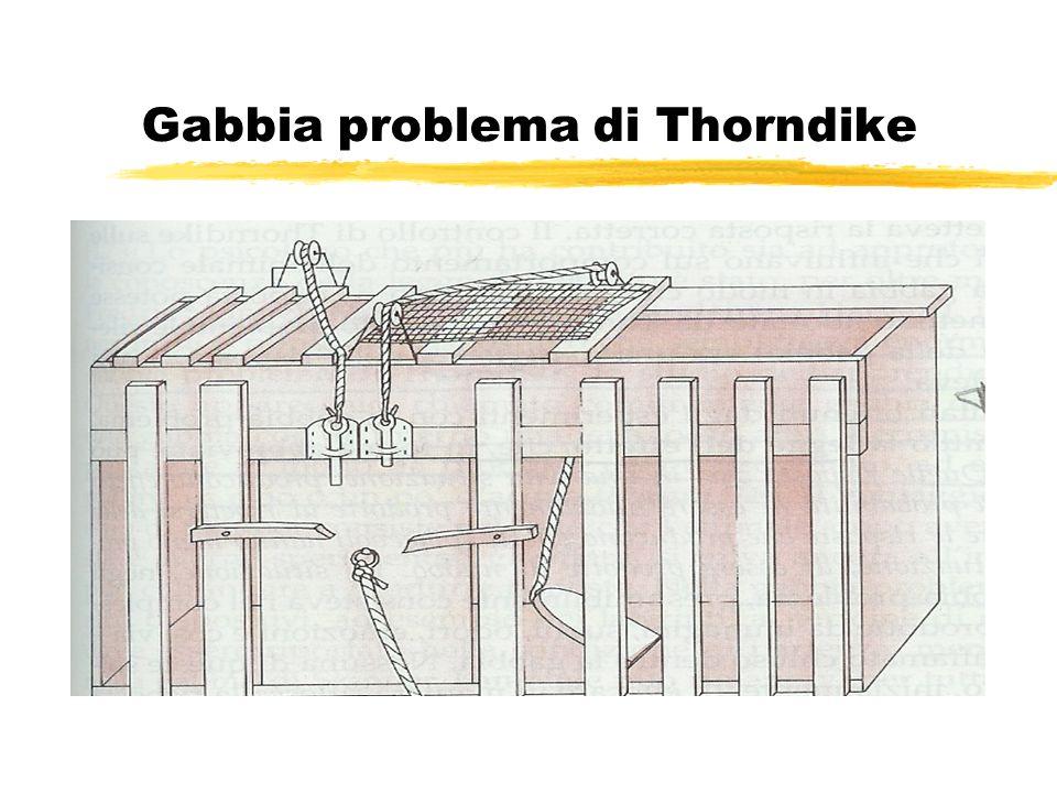 Gabbia problema di Thorndike