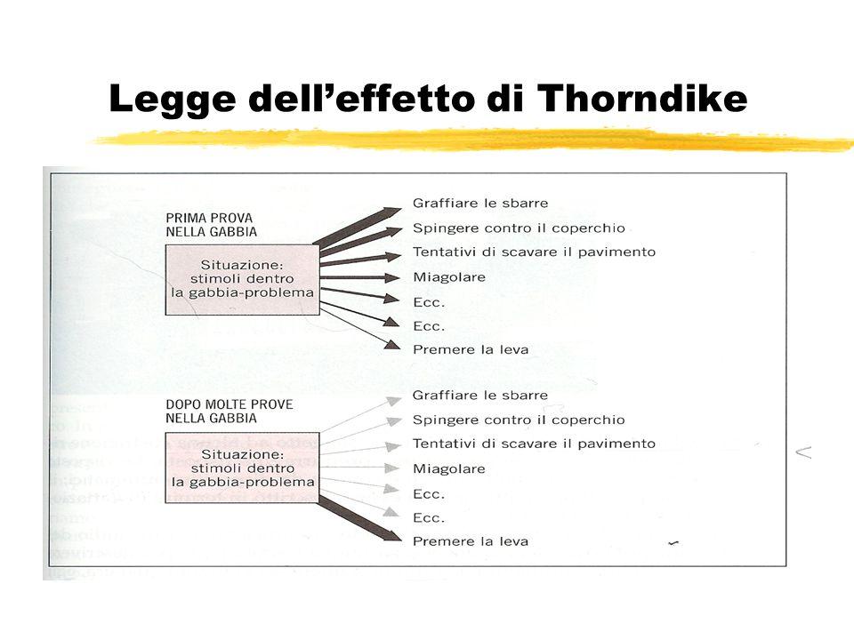 Legge dell'effetto di Thorndike