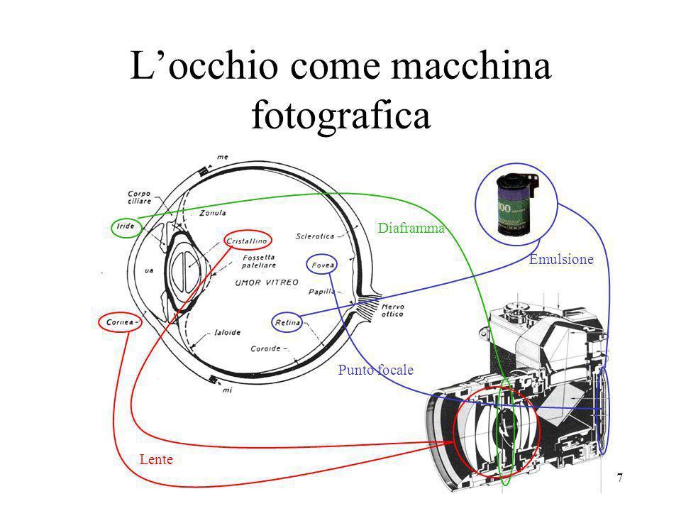 L'occhio come macchina fotografica