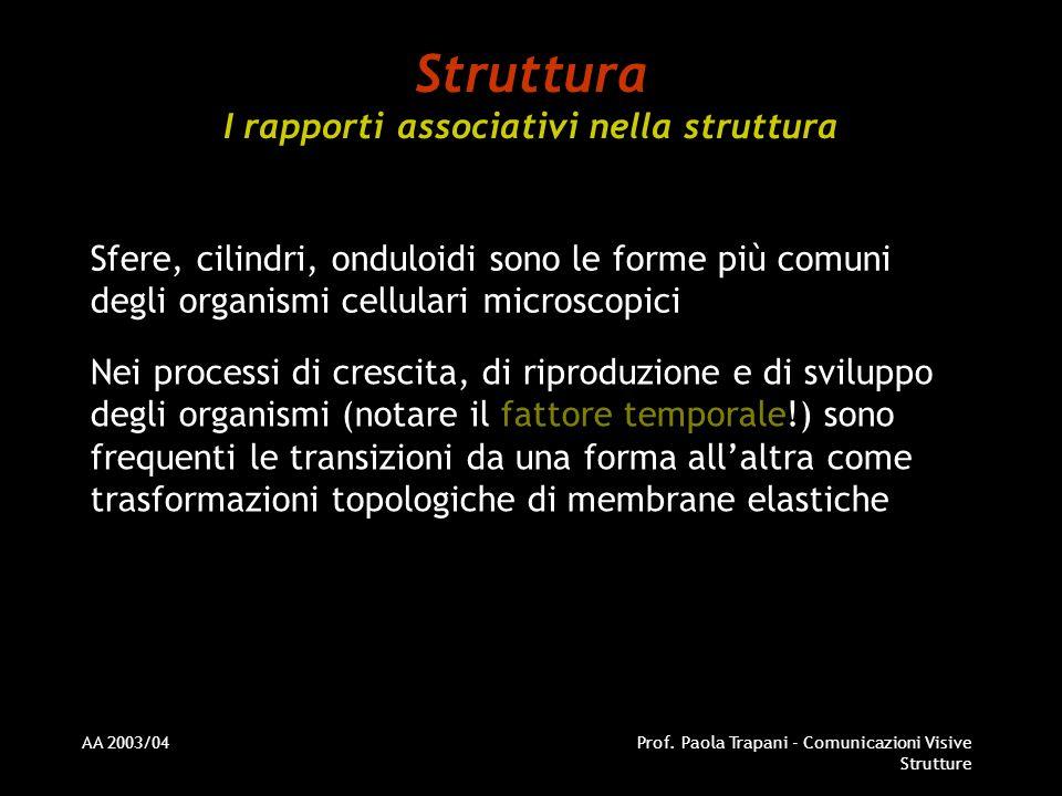 Struttura I rapporti associativi nella struttura