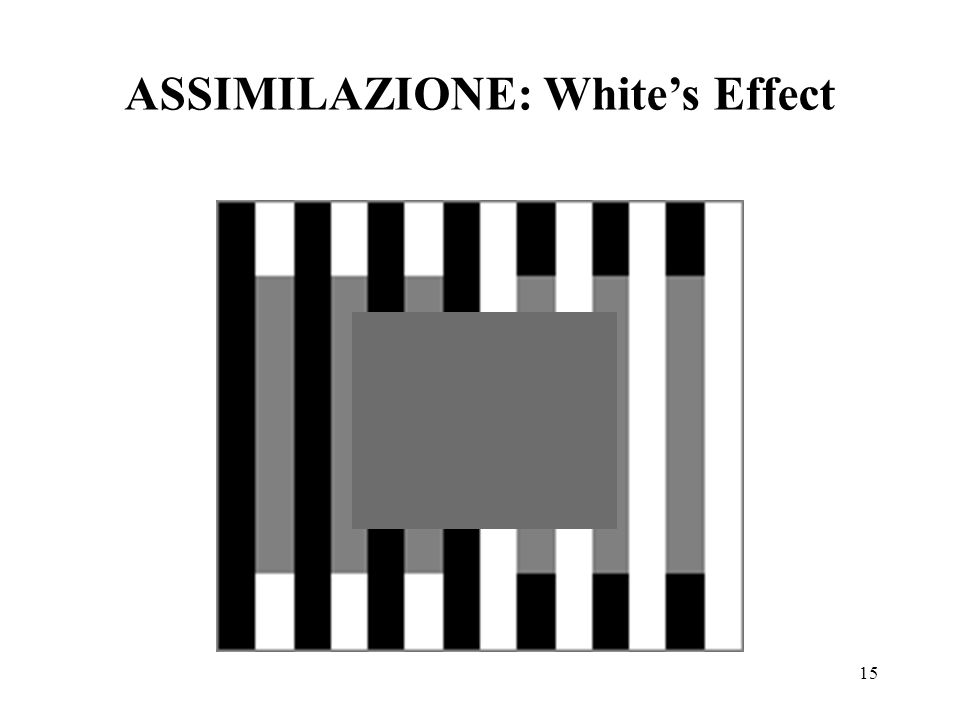 ASSIMILAZIONE: White's Effect