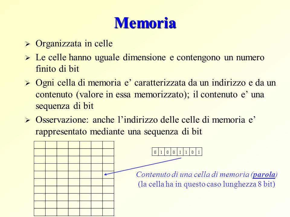 Memoria Organizzata in celle