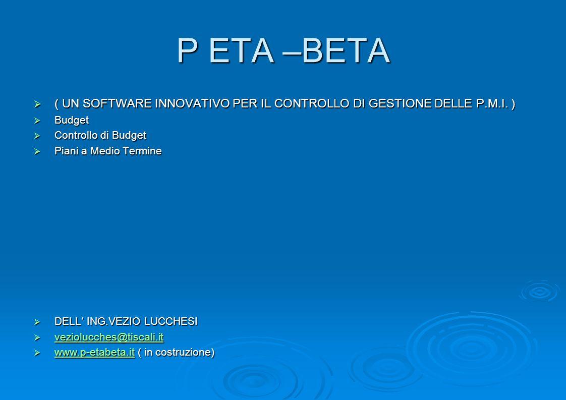 P ETA –BETA( UN SOFTWARE INNOVATIVO PER IL CONTROLLO DI GESTIONE DELLE P.M.I. ) Budget. Controllo di Budget.