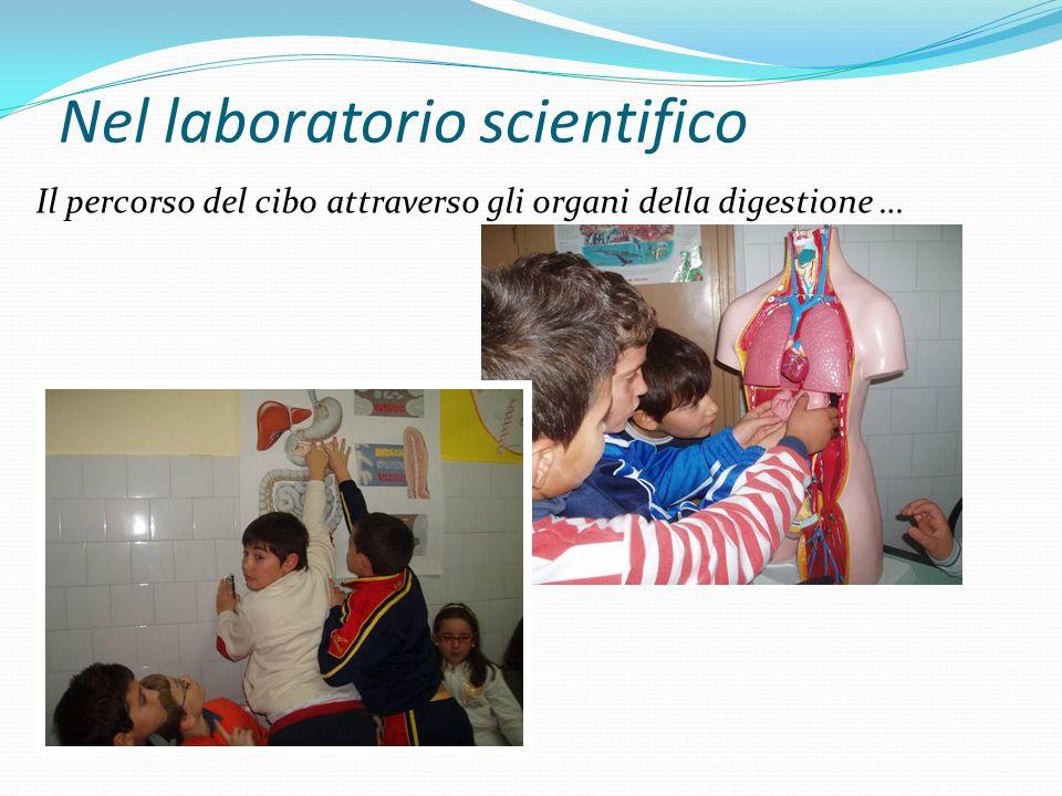 Nel laboratorio scientifico