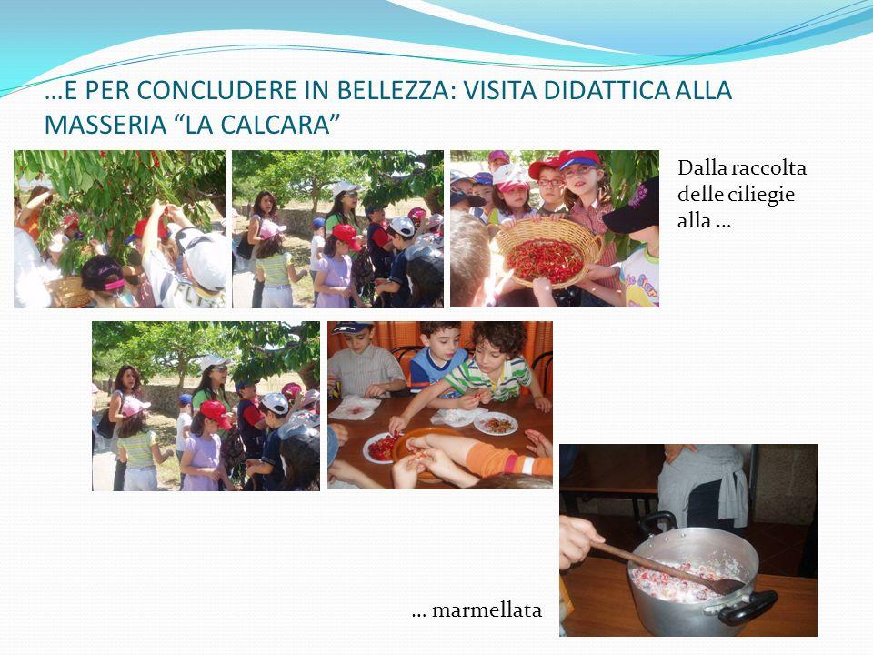…E PER CONCLUDERE IN BELLEZZA: VISITA DIDATTICA ALLA MASSERIA LA CALCARA