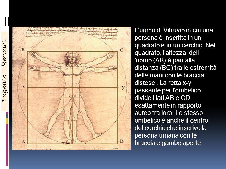 L uomo di Vitruvio in cui una persona è inscritta in un quadrato e in un cerchio. Nel quadrato, l altezza dell