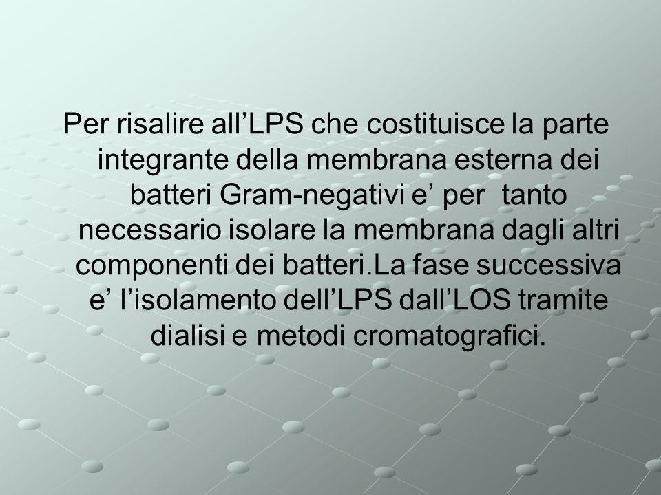 Per risalire all'LPS che costituisce la parte integrante della membrana esterna dei batteri Gram-negativi e' per tanto necessario isolare la membrana dagli altri componenti dei batteri.La fase successiva e' l'isolamento dell'LPS dall'LOS tramite dialisi e metodi cromatografici.