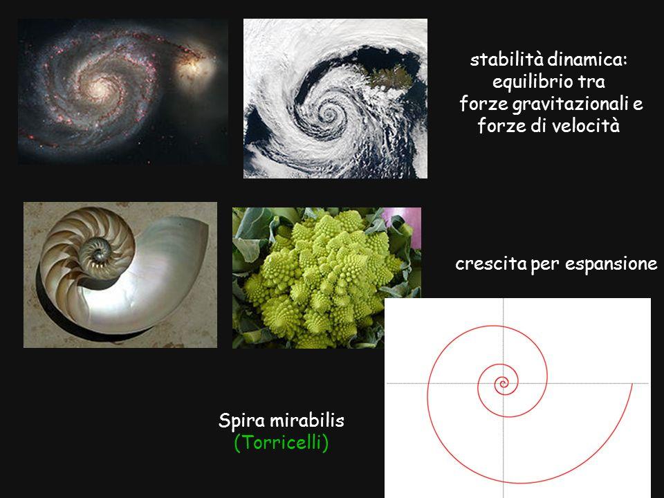 forze gravitazionali e