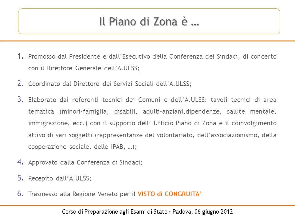 Il Piano di Zona è … Promosso dal Presidente e dall'Esecutivo della Conferenza dei Sindaci, di concerto con il Direttore Generale dell'A.ULSS;