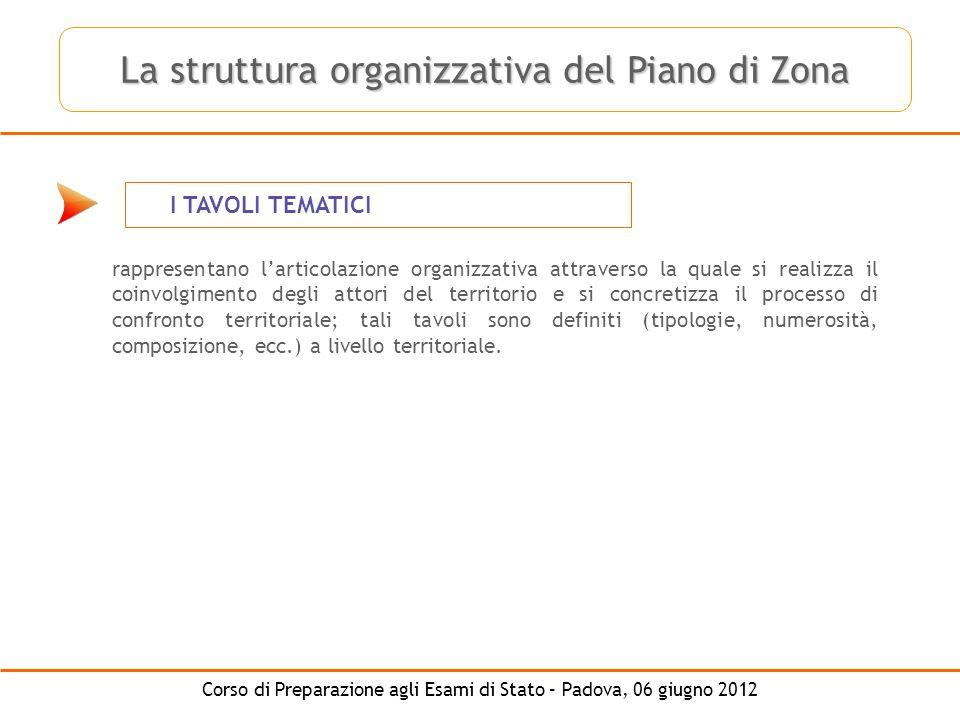 La struttura organizzativa del Piano di Zona