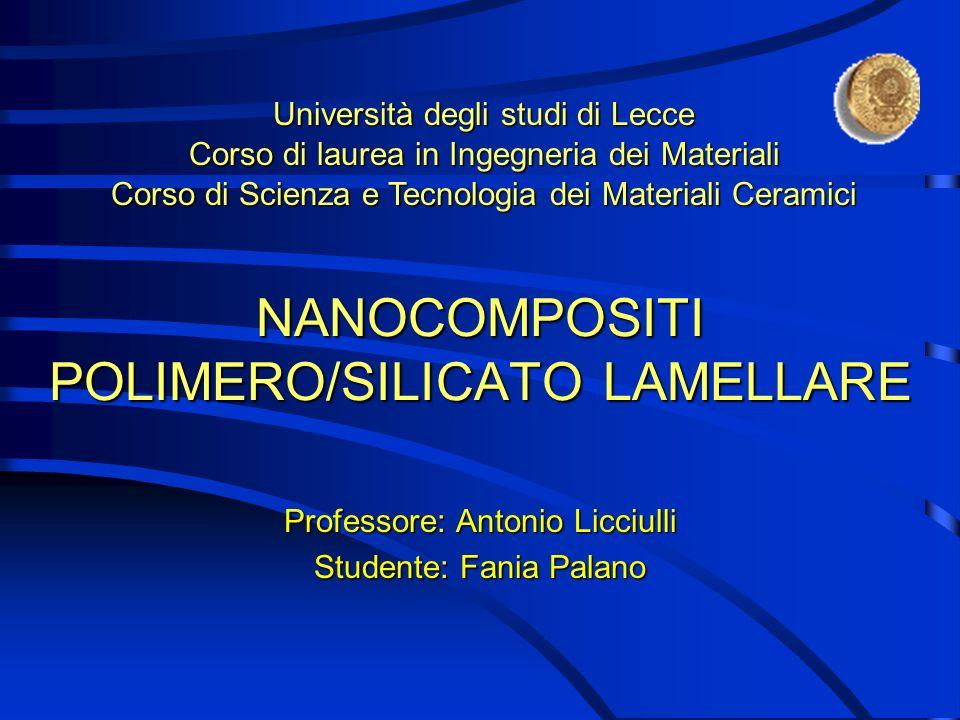 NANOCOMPOSITI POLIMERO/SILICATO LAMELLARE