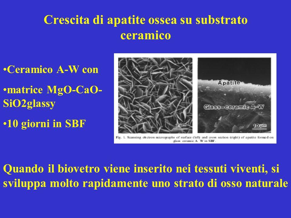Crescita di apatite ossea su substrato ceramico