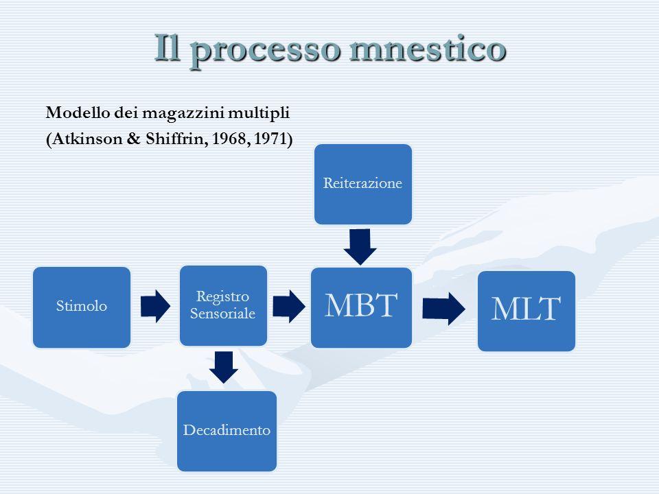 Il processo mnestico Modello dei magazzini multipli