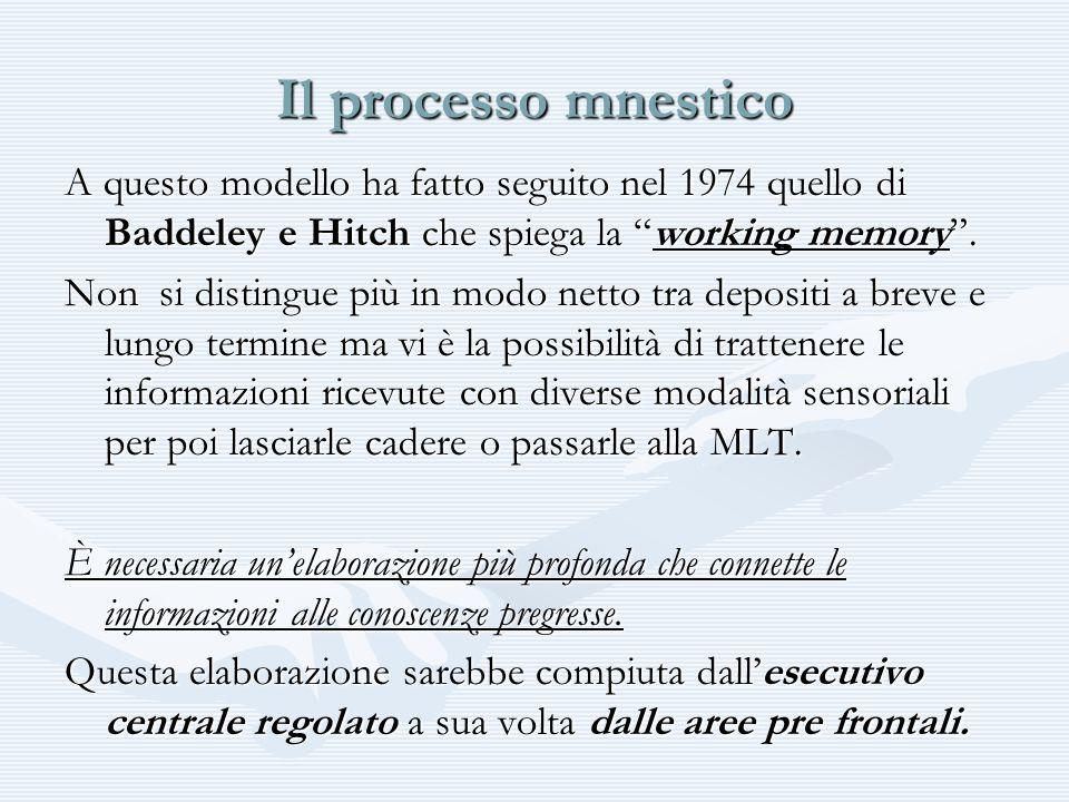 Il processo mnestico A questo modello ha fatto seguito nel 1974 quello di Baddeley e Hitch che spiega la working memory .