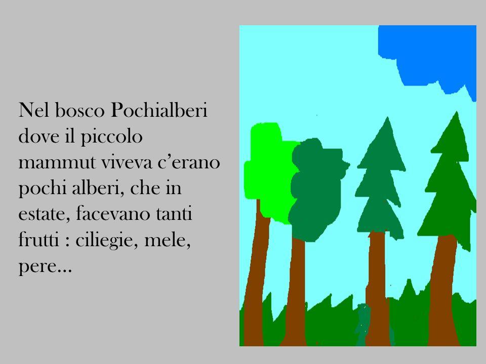 Nel bosco Pochialberi dove il piccolo mammut viveva c'erano pochi alberi, che in estate, facevano tanti frutti : ciliegie, mele, pere…