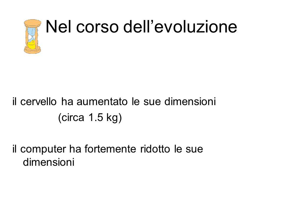 Nel corso dell'evoluzione