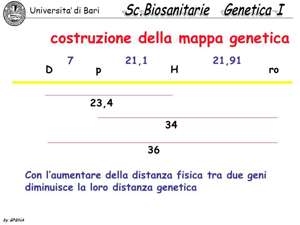 costruzione della mappa genetica