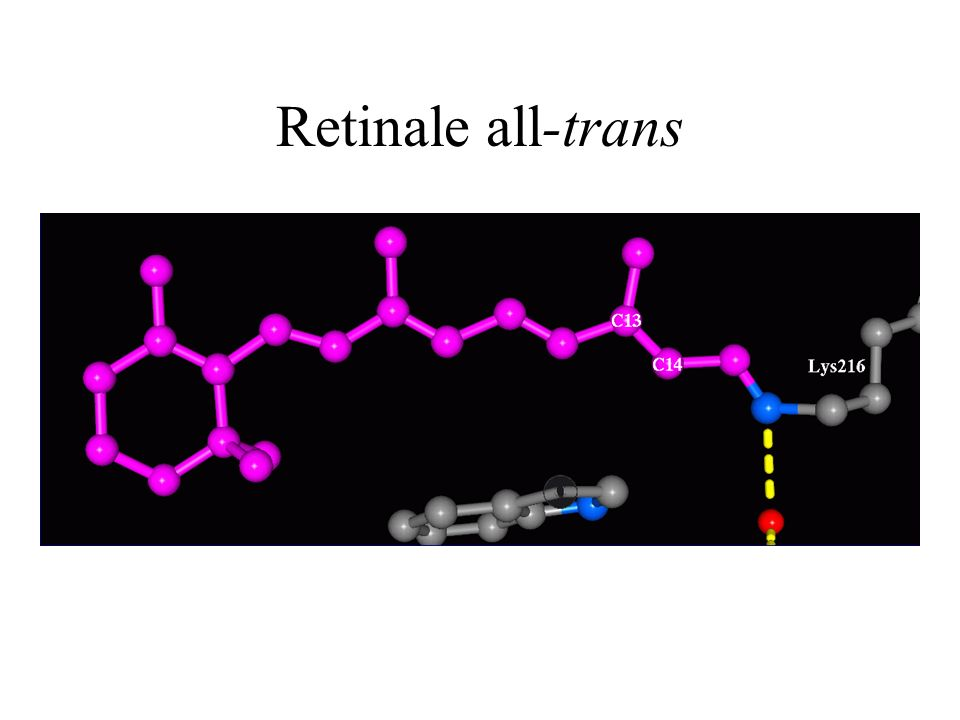 Retinale all-trans