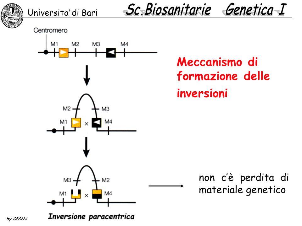 Meccanismo di formazione delle inversioni
