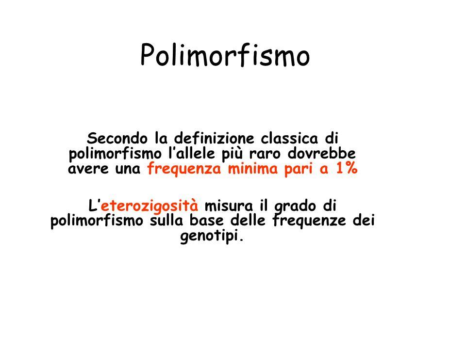 Polimorfismo Secondo la definizione classica di polimorfismo l'allele più raro dovrebbe avere una frequenza minima pari a 1%