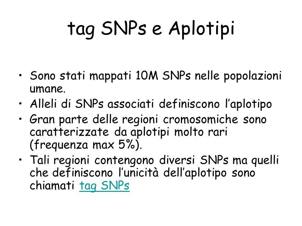 tag SNPs e Aplotipi Sono stati mappati 10M SNPs nelle popolazioni umane. Alleli di SNPs associati definiscono l'aplotipo.