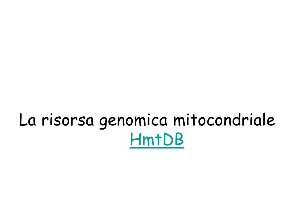 La risorsa genomica mitocondriale HmtDB