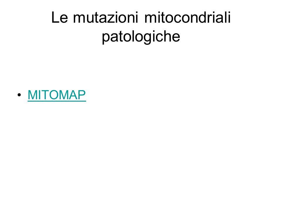 Le mutazioni mitocondriali patologiche