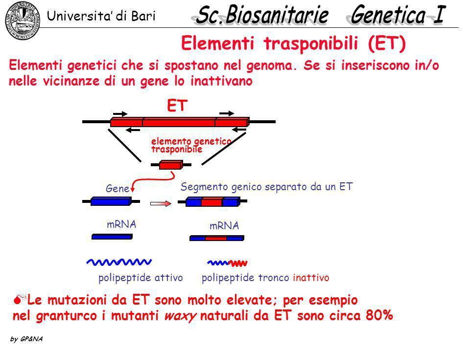Elementi trasponibili (ET)
