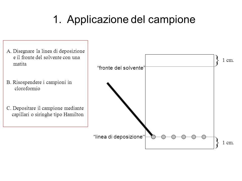 1. Applicazione del campione