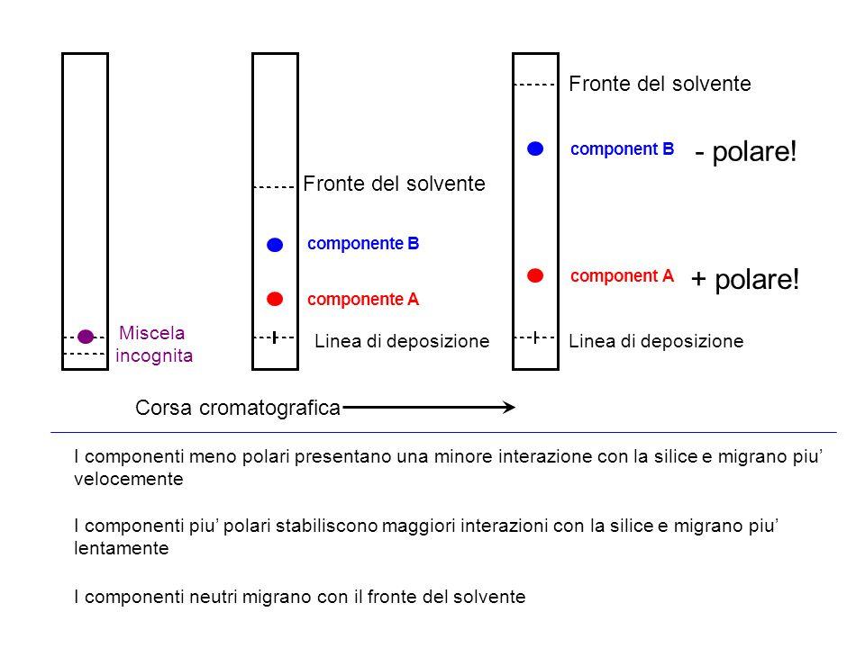 - polare! + polare! Fronte del solvente Corsa cromatografica Miscela